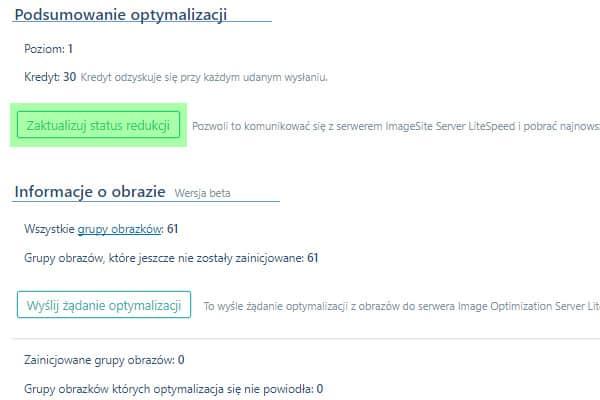 optymalizacja format WebP