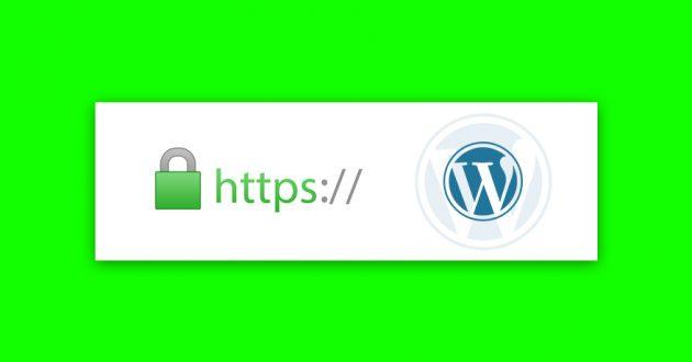 instalacja-certyfikatu-ssl-wordpress