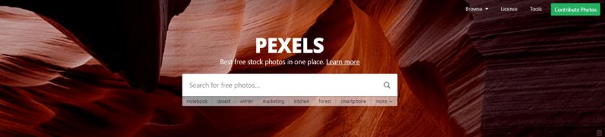 pexels - grafika na strone