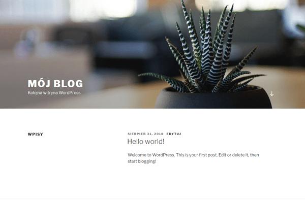 wyglad bloga